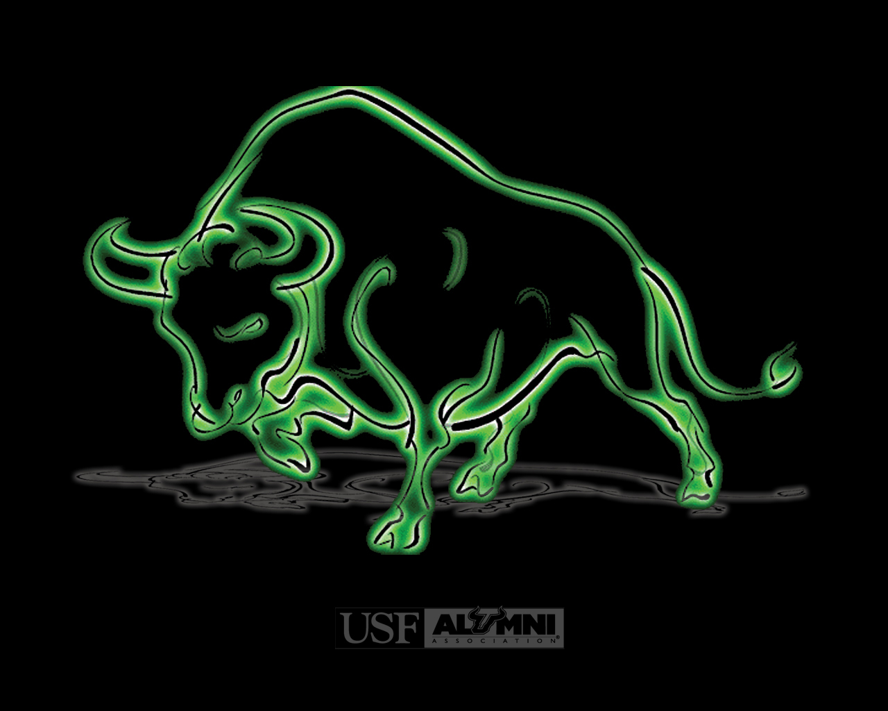USF Alumni USF Wallpaper
